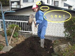 家庭菜園作り_f0031037_20264635.jpg