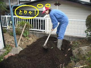 家庭菜園作り_f0031037_20265638.jpg