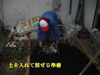 家庭菜園作り_f0031037_2026851.jpg