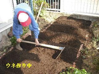 家庭菜園作り_f0031037_2027820.jpg