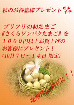 b0138650_1133719.jpg