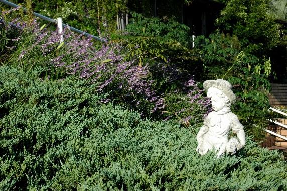 和歌山県植物公園緑花センター _b0093754_23534695.jpg