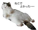 c0201577_9103948.jpg