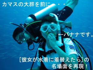 ピッカピカのラチャノイ島2ダイブ!_f0144385_054499.jpg