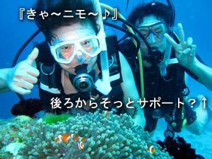 ピッカピカのラチャノイ島2ダイブ!_f0144385_08161.jpg