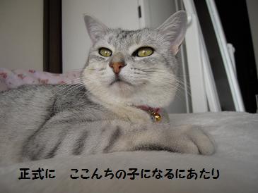 c0139488_0103878.jpg