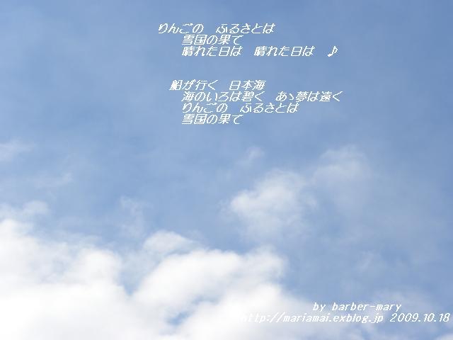 b0147203_1952428.jpg