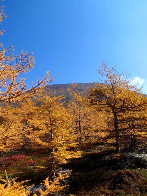 浅間山第1外輪山縦走-火山館コース_c0177814_17324650.jpg