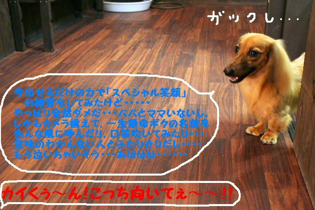 b0130018_18414868.jpg