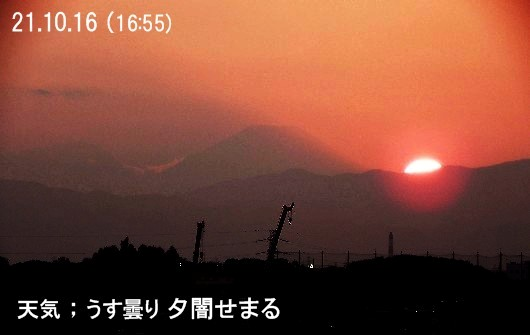 b0012636_9176.jpg