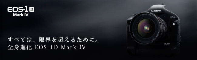 c0202747_20344931.jpg