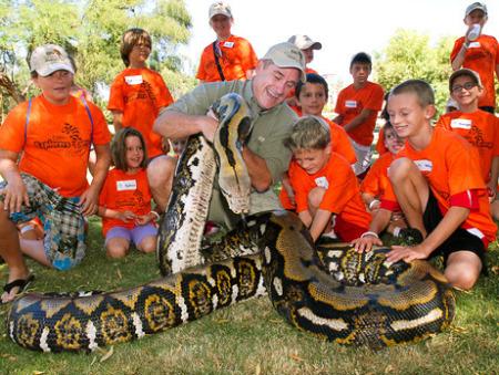 外来の巨大ヘビ:アミメニシキヘビ_b0052564_1203325.jpg