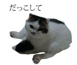 c0201577_8523852.jpg