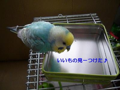 b0062090_014968.jpg