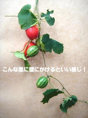 b0109796_1044750.jpg