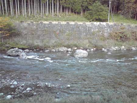 一体?太田川上流の水は..?_b0076008_21221627.jpg