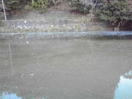 一体?太田川上流の水は..?_b0076008_2122690.jpg