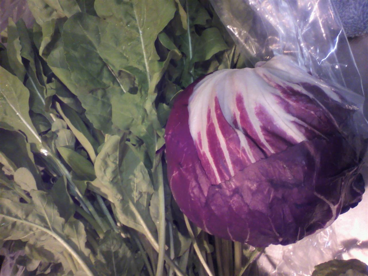 野菜 たっぷり みずみずしい野菜たち_e0190216_19403222.jpg