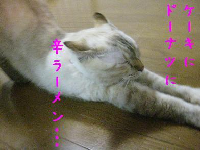 b0151748_1322553.jpg