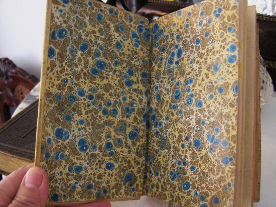 Book 102 19世紀の自然科学の本  半額以下_f0112550_4165185.jpg