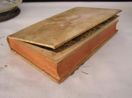 Book 102 19世紀の自然科学の本  半額以下_f0112550_419366.jpg