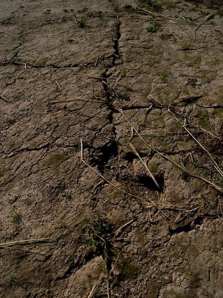 水と土の芸術祭 #014_e0082981_23485166.jpg
