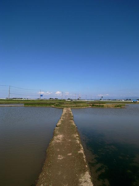 水と土の芸術祭 #014_e0082981_2348938.jpg