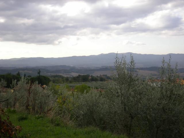 静けさの中で・・・・山の家_c0179785_6584586.jpg