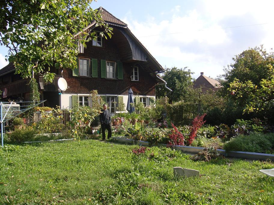 Mr. in Garden_e0097491_065896.jpg