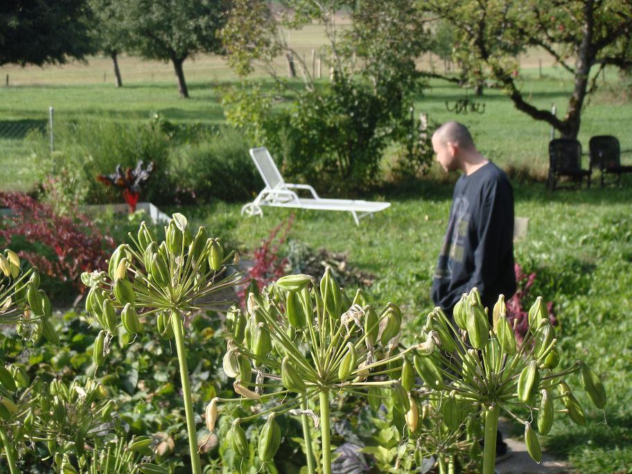 Mr. in Garden_e0097491_081788.jpg