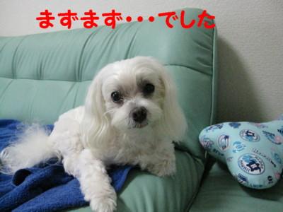 f0145192_14224916.jpg