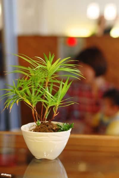 2009.10.22            ギャラリーcafe日向堂_e0192609_1117873.jpg