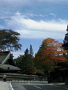 高野山祈りの旅_f0015517_1912621.jpg