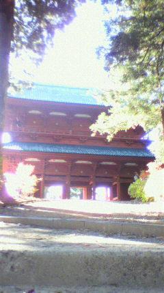 高野山祈りの旅_f0015517_1912698.jpg
