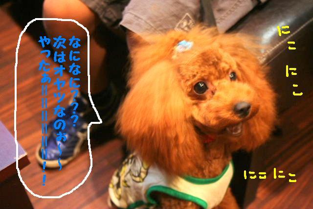 b0130018_20123465.jpg