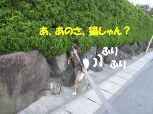 f0143123_2050146.jpg