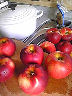 *りんごのタルト*_d0094131_22124272.jpg