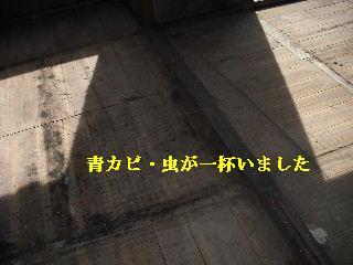 f0031037_21383333.jpg