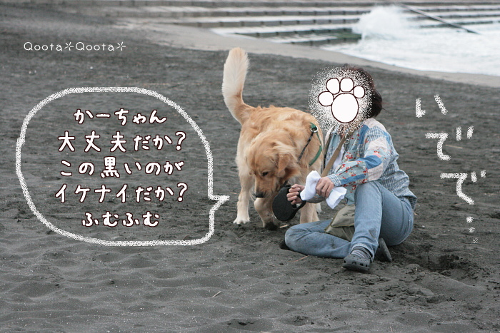 a0116048_3441869.jpg