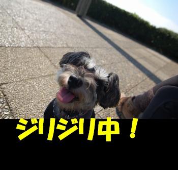d0048951_22231851.jpg