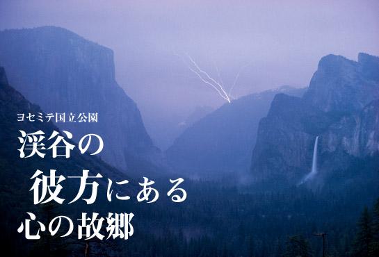 自然を目指すことは、ふるさとに帰ることなのだ_b0160957_111739.jpg