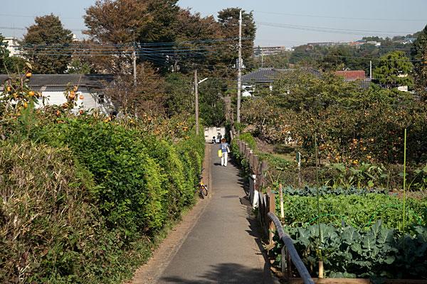 2009/10/22 生田行きのバスに乗る_b0171364_1224265.jpg