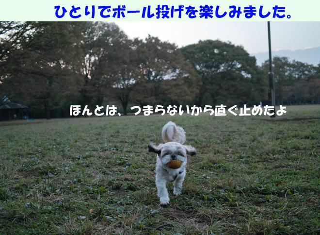 b0188372_8551410.jpg