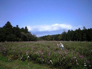 花畑。_a0127284_042486.jpg