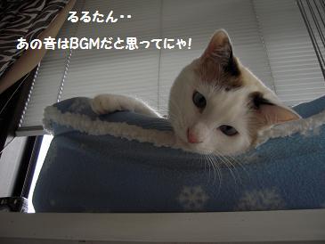 c0139488_1340203.jpg
