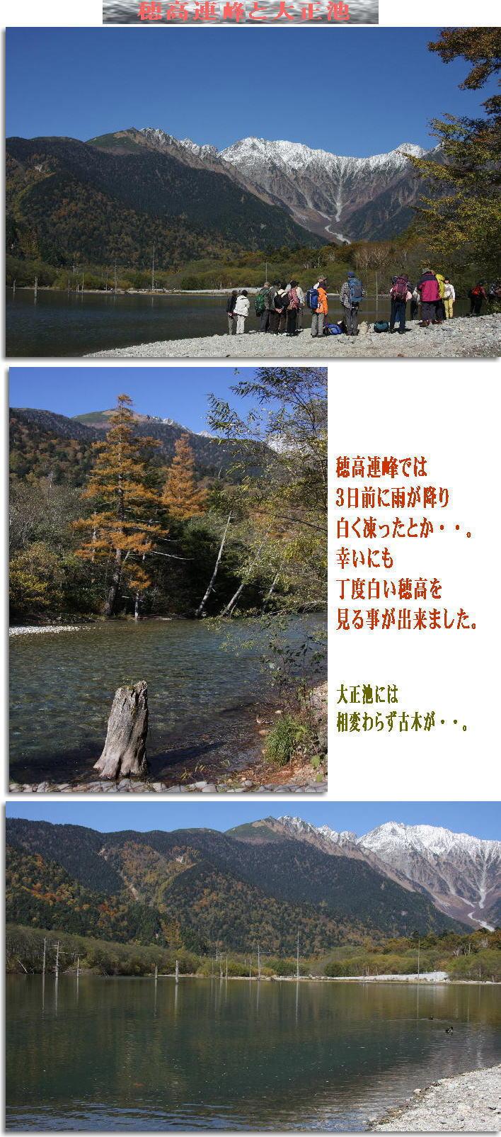 f0164592_104813.jpg