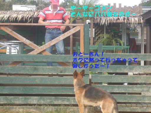 e0060693_032498.jpg