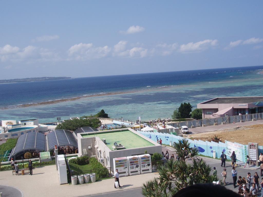 09年度 全国大会IN沖縄_e0075103_18382699.jpg