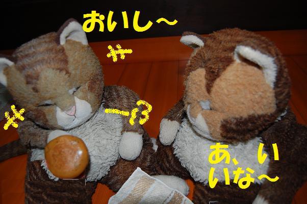 b0059978_22233973.jpg