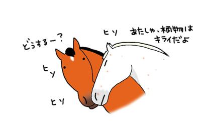 a0093189_1601596.jpg
